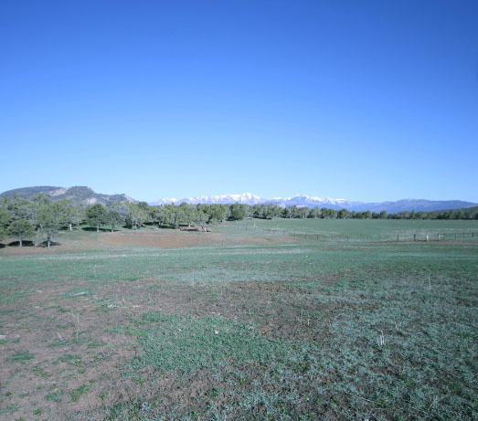 Webb Ranch edit