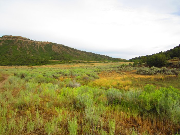 Lot 24, one of the parcels formerly owned by Oakridge Energy, Inc, is now owned by Marc and Jane Katz of Durango.