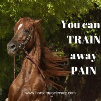 You can't train away PAIN