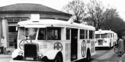 De hvide busser.jpg