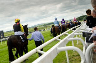 2000 Guineas Field going to post