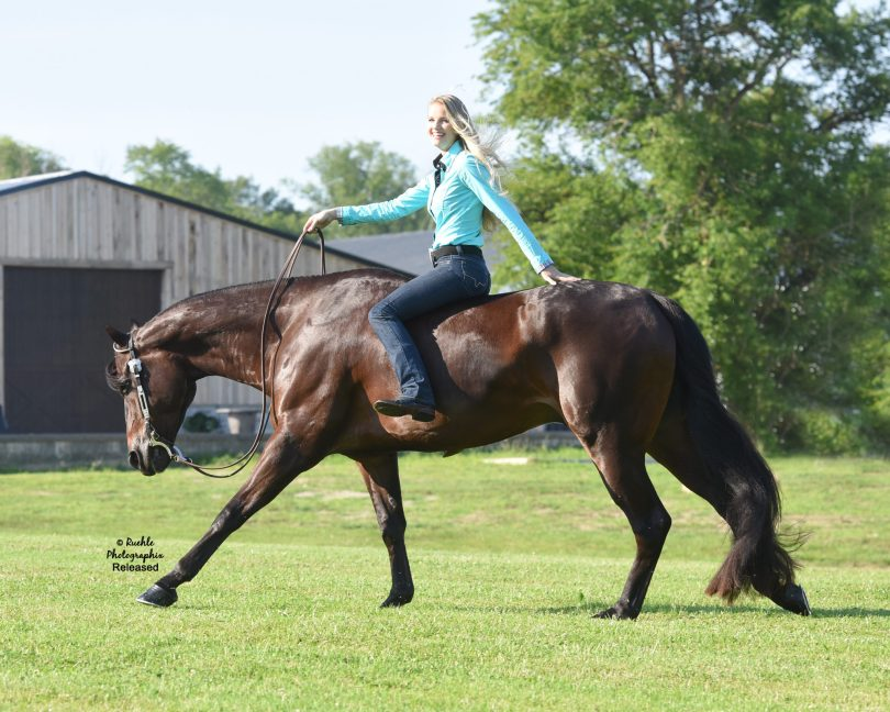 Horseback Riding in College: Tips from Charlotte Chubb