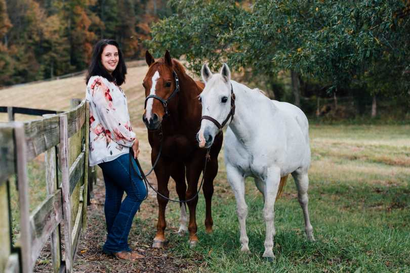 horse photography lighting