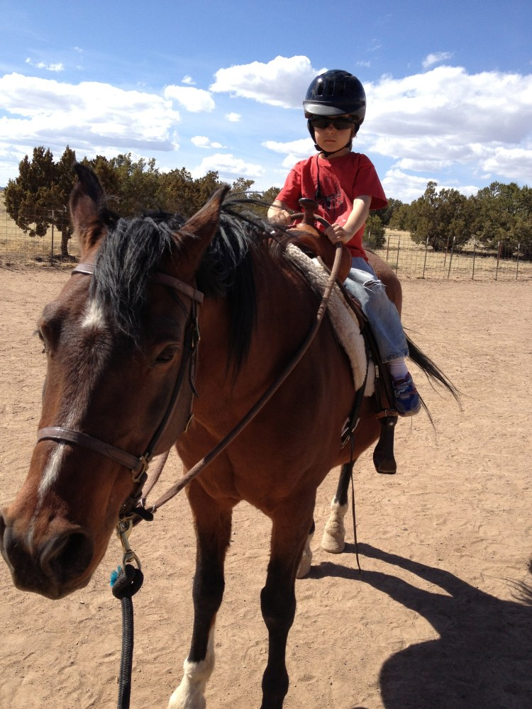 When should I stop riding my older horse? (3/4)