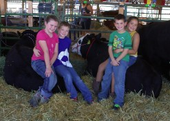 Anna and Kaine on Tiller and Kade and Anna's best friend, Bella, on Bella's steer Willy. Willy and Bella did really good as well.