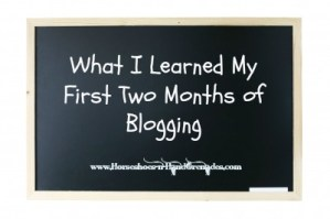 What I Learned My First Two Months of Blogging