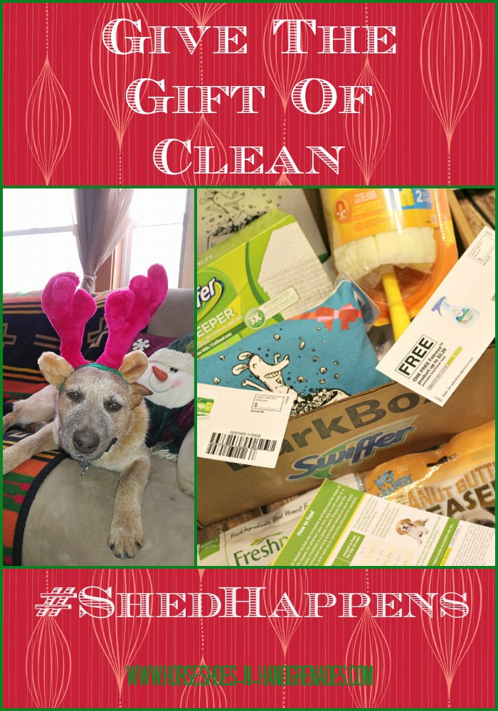 Give-the-gift-of-clean