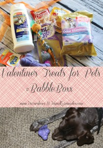 A Care Package For Your Pets – Valentine's Edition