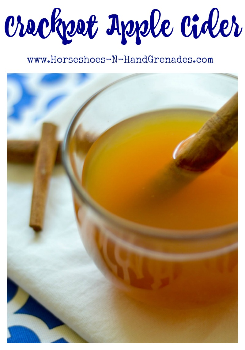 crockpot-apple-cider-pinterest