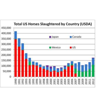 Slaughter of U.S. Horses Soars as Horse Meat Scandal Explodes