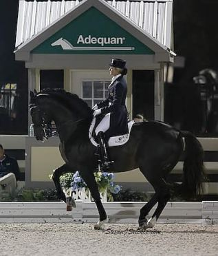 Don't Miss the $35,000 G&C Farm Puissance and FEI Grand Prix Freestyle at the Adequan Global Dressage Festival