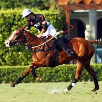 Audi's Nico Pieres goes for the neck shot against Valiente