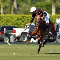 Gonzalito Pieres tries to gain control of the ball