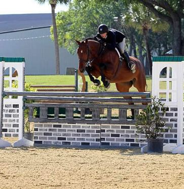 Tampa Bay Classic Attracts Top Riders for First Day of Hunter Competition