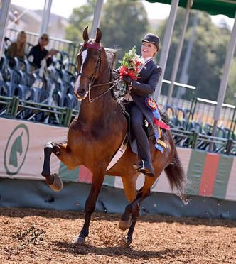 Emily Chapman Claims 2013 USEF Saddle Seat Adult Amateur Medal Final Title