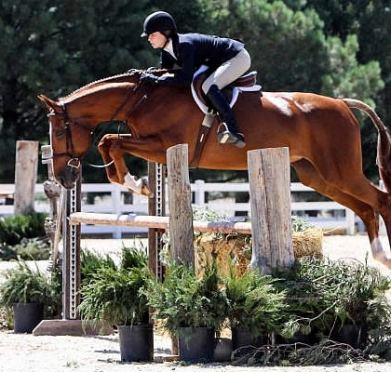 Hannah Holik Conquers the Competition in 3'6″ Performance Hunters at Summer in the Rockies V