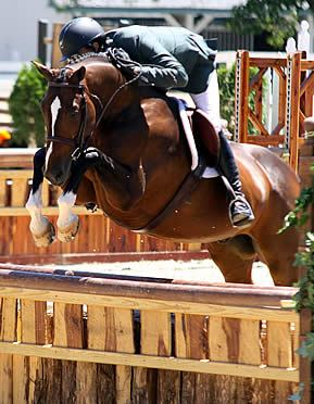 Colin Syquia and Apropos Win USHJA National Hunter Derby at Kentucky Summer Horse Show
