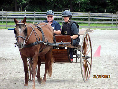 United States Driving for the Disabled Free Para-Equestrian Developing Driver Clinic a Success
