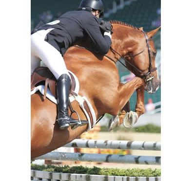 Scott Stewart Leads USHJA International Hunter Derby Championships at Bluegrass Festival Horse Show
