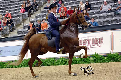 Alfano and Sedlacko Steal Show in American Saddlebred Hunter Challenge Victory at Alltech National Horse Show