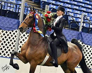 UPHA American Royal National Championship to Host USEF Saddle Seat Medal Final
