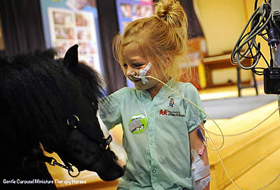 Two Florida Therapy Horses Newest Breyer Model Horses