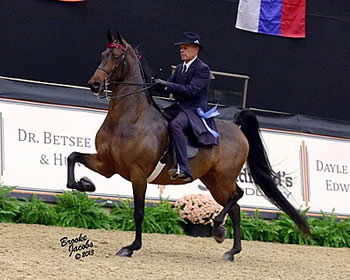 Miller, Swope and Rudder Score Emphatic Win in American Saddlebred Division at Alltech National Horse Show