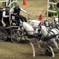 IJsbrand Chardon steers to victory in the Extreme Driving FEI World Cup