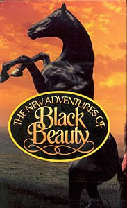 Black Beauty Returns to British Television with Horse & Country TV
