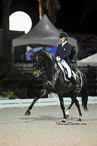 Lyle and Wizard Golden in Freestyle Competition at Wellington Nations Cup CDIO3*