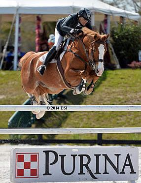 Tracy Fenney Earns Back-to-Back Wins with $50,000 Purina Animal Nutrition Grand Prix