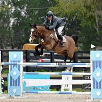 ESI Photography. Aaron Vale and Gems Bond were the ones to beat in the $2,500 Brook Ledge Open Welcome 1.40m