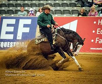 Flarida Wins USEF Open Reining Nat'l Championship & Selection Trial for WEG U.S. Reining Squad