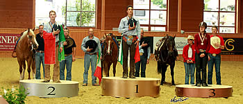 All Gold for Italy at Junior and Young Rider Reining Championships in Givrins