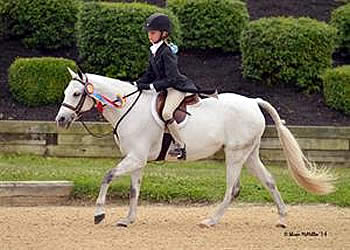 Jayne and Blueberry Hill Claim Small Regular Hunter Pony Championship