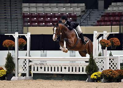 WIHS Regional Horse Show and USHJA Zone 3 Finals Award Top Honors