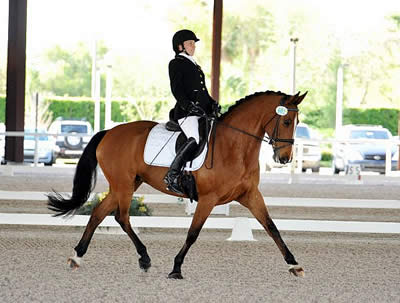 Long-Time Partnership Brings Para-Dressage Rider's Dreams to Fruition