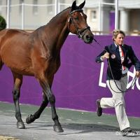 Missy Ransehousen jogs Lord Ludgar at the London Olympic Games