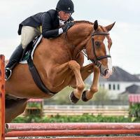 Jennifer Alfano and Jersey Boy captured the 2015 $25,000 USHJA International Hunter Derby at the Pin Oak Charity Horse Show.
