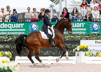 Graves Records 2nd Ever 80% at AGDF in Stillpoint Farm FEI Nations Cup CDIO3* Freestyle
