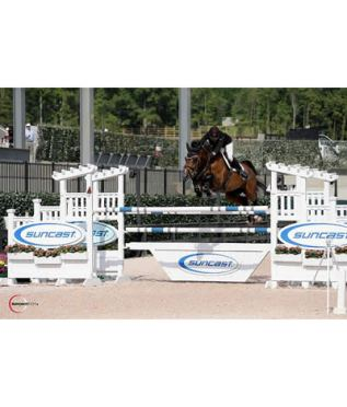 Fagerstrom and Flower Win Again at Tryon Spring 5 to Take $15,000 Suncast 1.45m Welcome Stake