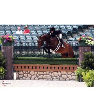 Farmer on Fire Adding Win in $50,000 WCHR Open Hunter Classic aboard Point Being