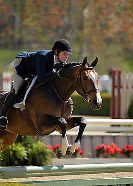 Darby Mazzarisi and Gemology Come Full Circle to Win Grand Adult Amateur Hunter Champion