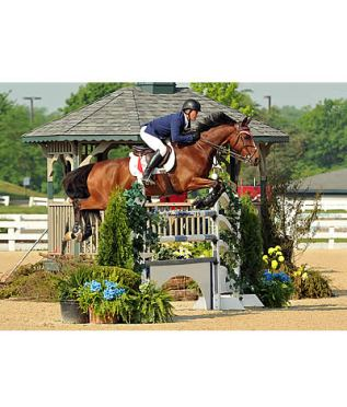 Todd Minikus Pilots Four Horses to the Win at Kentucky Spring Horse Shows