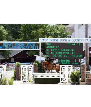 Katie Robinson and Amarillo Awarded Grand Amateur-Owner Championship