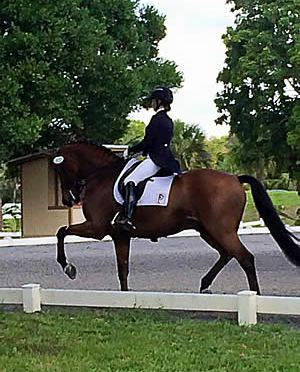 Piaffe Performance Qualifies 3 for USEF Young & Developing Horse Dressage Nat'l Championships
