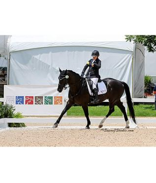 US Team Makes History at Inaugural North Am. Jr. Young Rider Para-Dressage Championships
