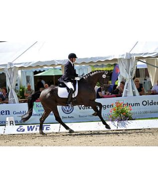 Endel Ots and Lucky Strike Capture Early Victory at 2015 Oldenburg Championships