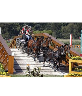 Germany's Michael Brauchle and Dutch Team Claim Gold at Aachen 2015