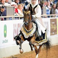 Arabian Mounted Native Costume class